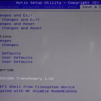 DSC02701_R